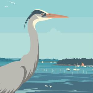 Gros plan de l'illustration Morbihan le golfe