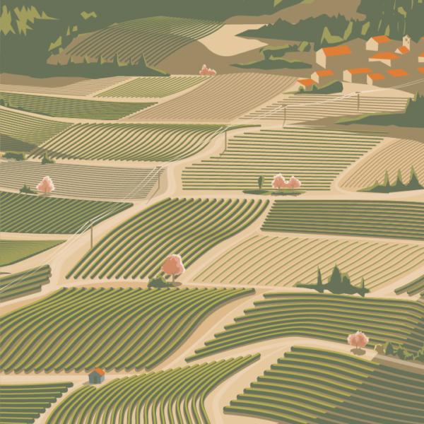 Gros plan de l'illustration Vallée de l'Agly